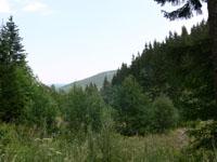 zdjęcie stacji bazowej Zbocze Góry Rudnik (Plus GSM900, Era GSM900, Orange GSM900) p1020822.jpg