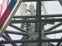 zdjęcie stacji bazowej Jana Pawła II 3 (Orange GSM900) pict0026.jpg