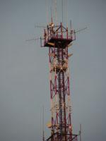 zdjęcie stacji bazowej Ziębicka 34 (Plus GSM900/GSM1800/UMTS, Orange GSM900/GSM1800/UMTS) pict0002.jpg