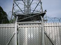 zdjęcie stacji bazowej Osiedle Korczaka (Plus GSM900/GSM1800, Era GSM900) plus-era2.jpg