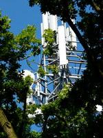 zdjęcie stacji bazowej Sokolskiego 2 (Era GSM900/GSM1800/UMTS, Orange GSM900/GSM1800/UMTS) p1020134.jpg