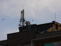 zdjęcie stacji bazowej Pogodna 8 (Play GSM900/UMTS) p1080437.jpg