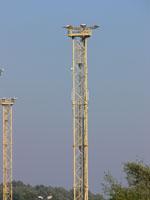 zdjęcie stacji bazowej Basen Górniczy /port wieże oświetleniowe/ (Orange GSM1800, Play UMTS) p1030580.jpg