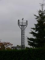 zdjęcie stacji bazowej Harnasiów 9 (Plus GSM900) p1030860.jpg