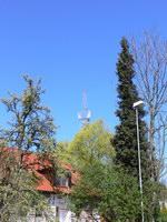 zdjęcie stacji bazowej Nehringa 11C (Orange GSM900/GSM1800/UMTS) p1070226.jpg