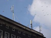 zdjęcie stacji bazowej Wojska Polskiego 20 (Plus GSM900/GSM1800/UMTS, Orange GSM900/GSM1800) dsc05731.jpg